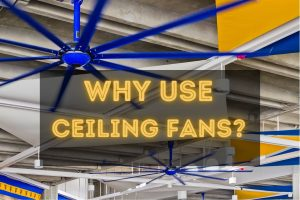 ceiling fan in Brisbane